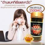 High Strength Propolis 2500 mg. แบรนด์ Nubolic ขนาด 300 เม็ด 1 กระปุก