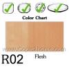 R02 - Flesh