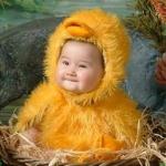 ลูกนก :ชุดแฟนซีลูกนก Nestling Costume /สำหรับหนูน้อยหนัก 5-13 กก. (ประมาณ 3 เดือน - 1 ชวบ)