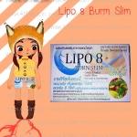 LIPO 8 แบบแผง