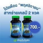 โปรโมชั่น สาหร่าย Kelp 2 ขวด ช่วยให้การควบคุมน้ำหนักในคนอ้วนเป็นไปได้ง่ายขึ้นและได้ผลโดยไม่ต้องออกกำลังกายอย่างหักโหม