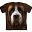 Saint Bernard Face - Youth thumbnail 1