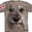 Mountain Big Face Miniature Schnauzer Dog T-Shirts thumbnail 1