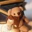 ตุ๊กตาหมีผ้าขูดขนสีโอวัลติน ขนาด 8 cm. - Ever thumbnail 4