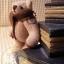 ตุ๊กตาหมีผ้าขูดขนสีโอวัลติน ขนาด 8 cm. - Ever thumbnail 2