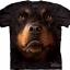 The Mountain Big Face Rottweiler Dog T-Shirts thumbnail 1