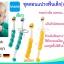 ชุดสอนแปรงฟัน MAM Learn to Brush Set [เด็กอายุ 6 เดือนขึ้นไป] thumbnail 2
