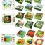 จิ๊กซอว์บล็อคไม้สามมิติ 6 ด้าน 6 ภาพ thumbnail 10