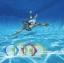 ทุ่นใต้น้ำรูปปลา 4 ห่วง [Intex-55507] thumbnail 3