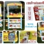 ชุดร้านไอศกรีมขนมหวาน Store Dessert Super Play Set thumbnail 2