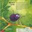 [เซต 3 เล่ม] หนังสือเปิดโลกใบเล็ก thumbnail 5